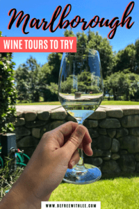 a pinterest image of this article on the best marlborough wine tours