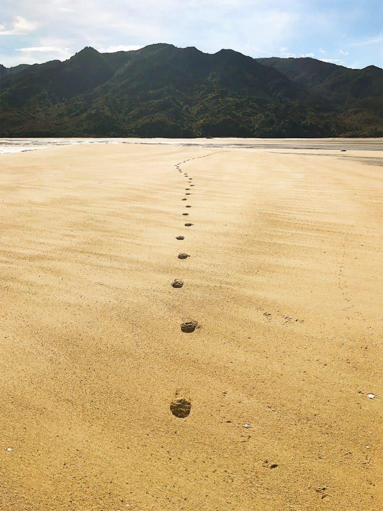 abel-tasman-coast-track 13