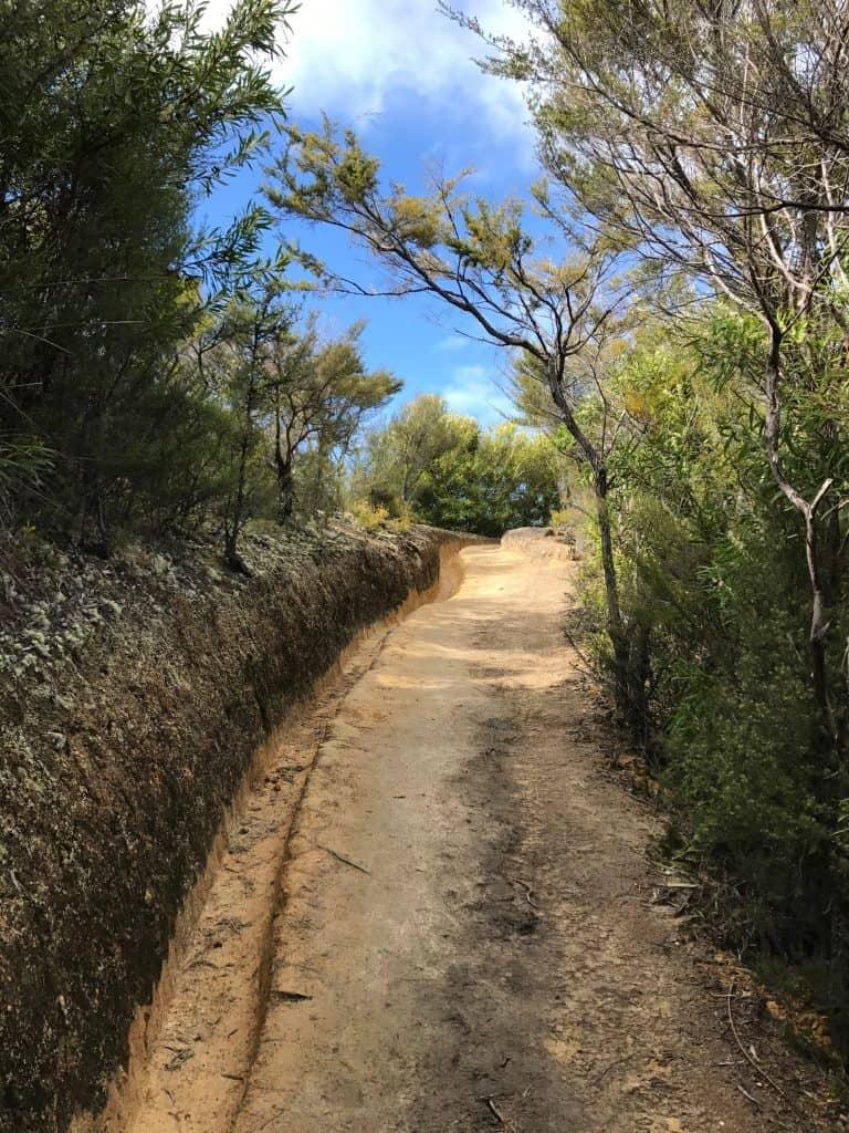 abel-tasman-coast-track 3