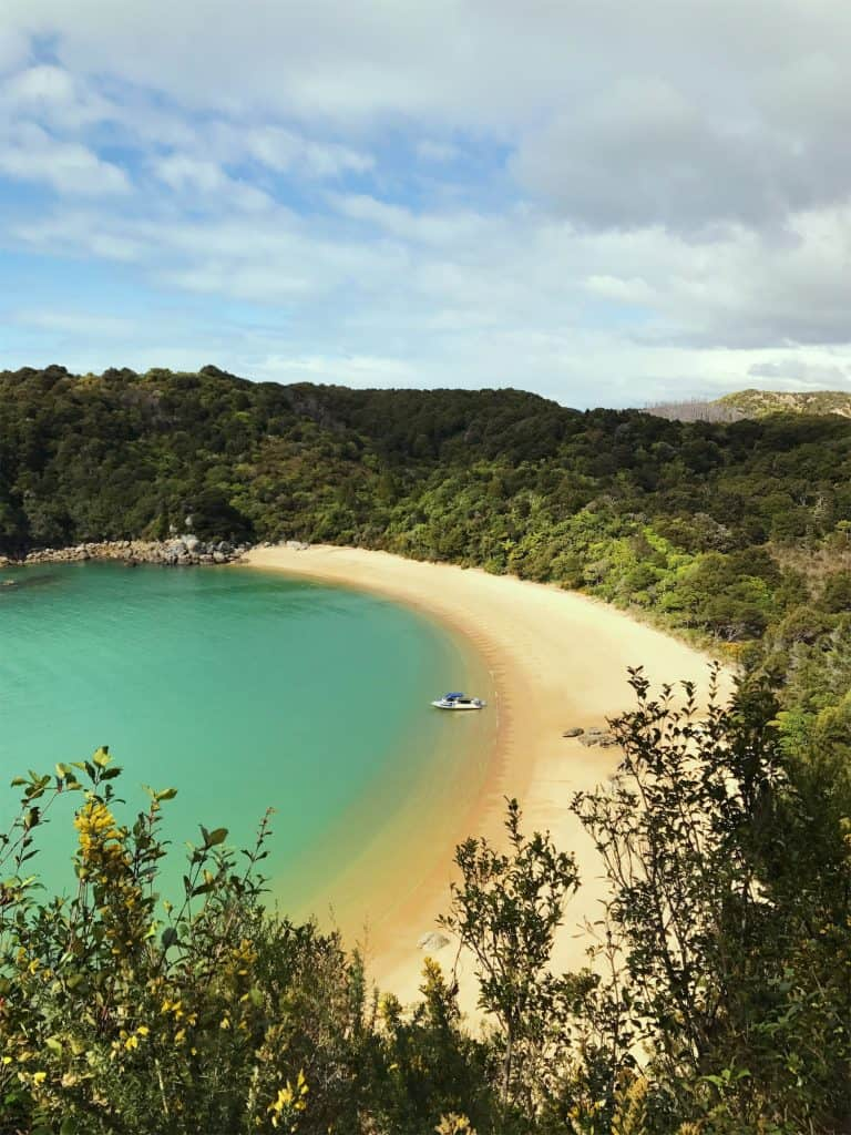 summer is a beautiful time to visit New Zealand and the most popular season for South Island road trips. This photo is of my favourite beach in the Abel Tasman National Park!