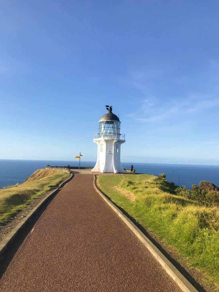 things-to-do-in-new-zealand 9