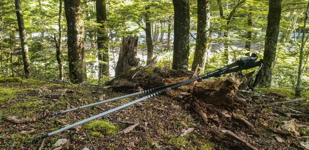 Are-trekking-poles-worth-it?3